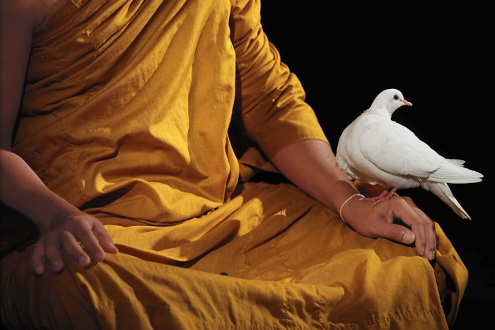 follmi bouddhisme.jpg