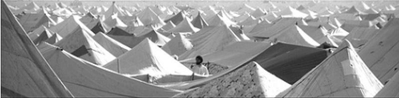 sharaoui1.jpg