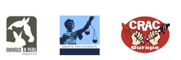 logos AEP DDA CRAC