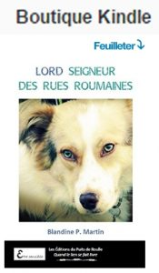 lord-kindle-fr