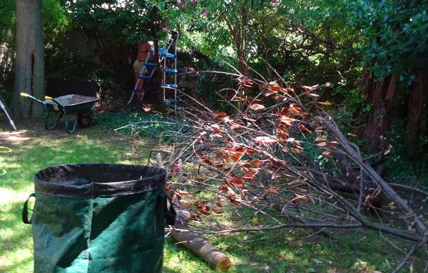 Un dimanche normal de jardinage anna galore le blog for Les meilleurs sites de jardinage