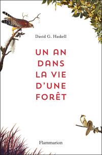 C_Un-an-dans-la-vie-dune-foret_3591